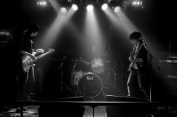 GOSINE-STRIPCATS-20140918-003-final
